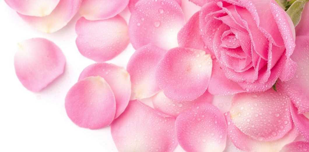 نحوه برخورد با واژن نازک تر از برگ گل!