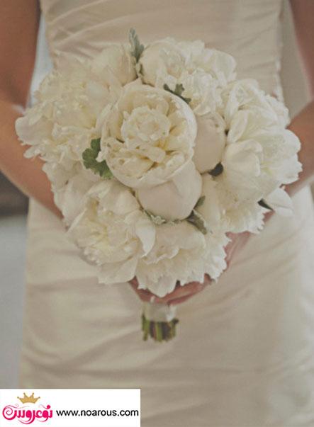 آلبوم عکس دسته گل های سفید عروس