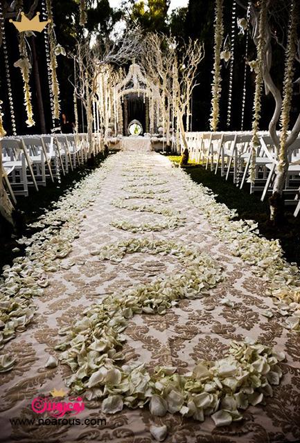 آلبوم ورودی عروس و داماد