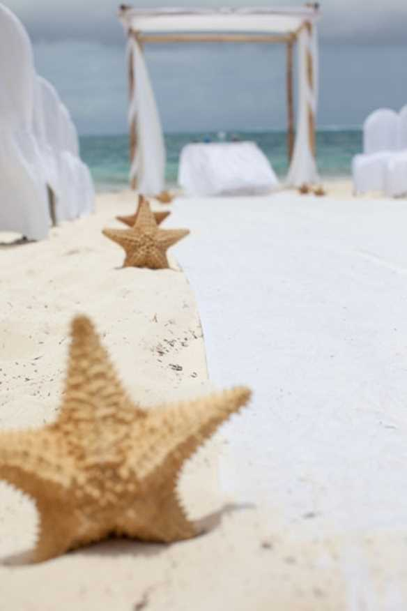 جشن عروسی با حال و هوای دریا