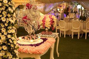 باغ و تشریفات یلان | چیدمان داخل باغ عروسی