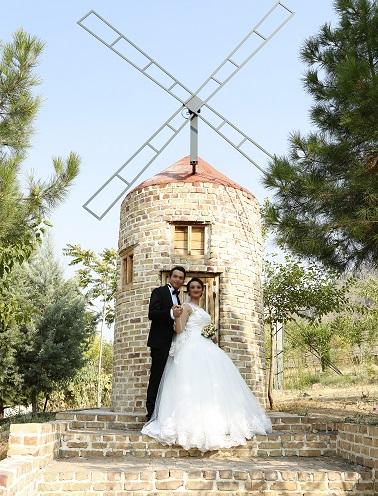 آتلیه عکس و فیلم سرو | عروس و داماد در باغ